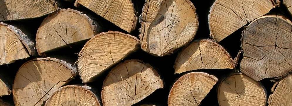 Le a para chimenea imagen de trozos de madera seca - Tipos de lena para chimeneas ...