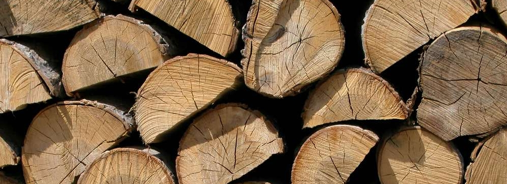 Leña para chimenea, imagen de trozos de madera seca