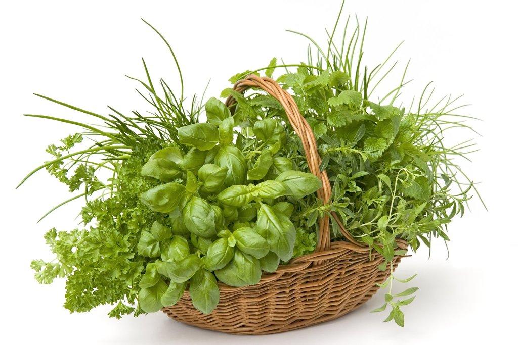 Consejos para una barbacoa - cesta de hierbas aromaticas