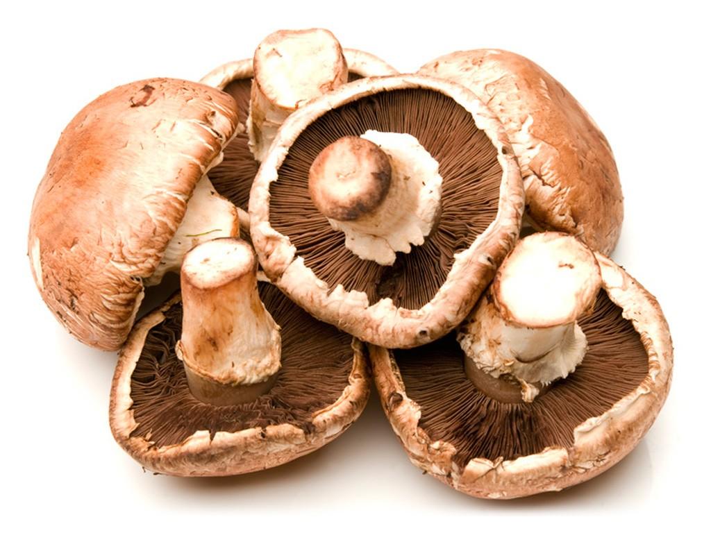 Variedad de champiñones portobello - Champiñones y la barbacoa