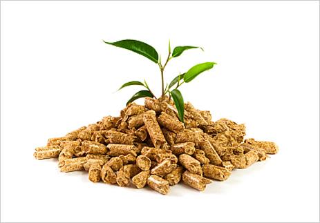Una alternativa ecológica el uso de Pellet como combustible