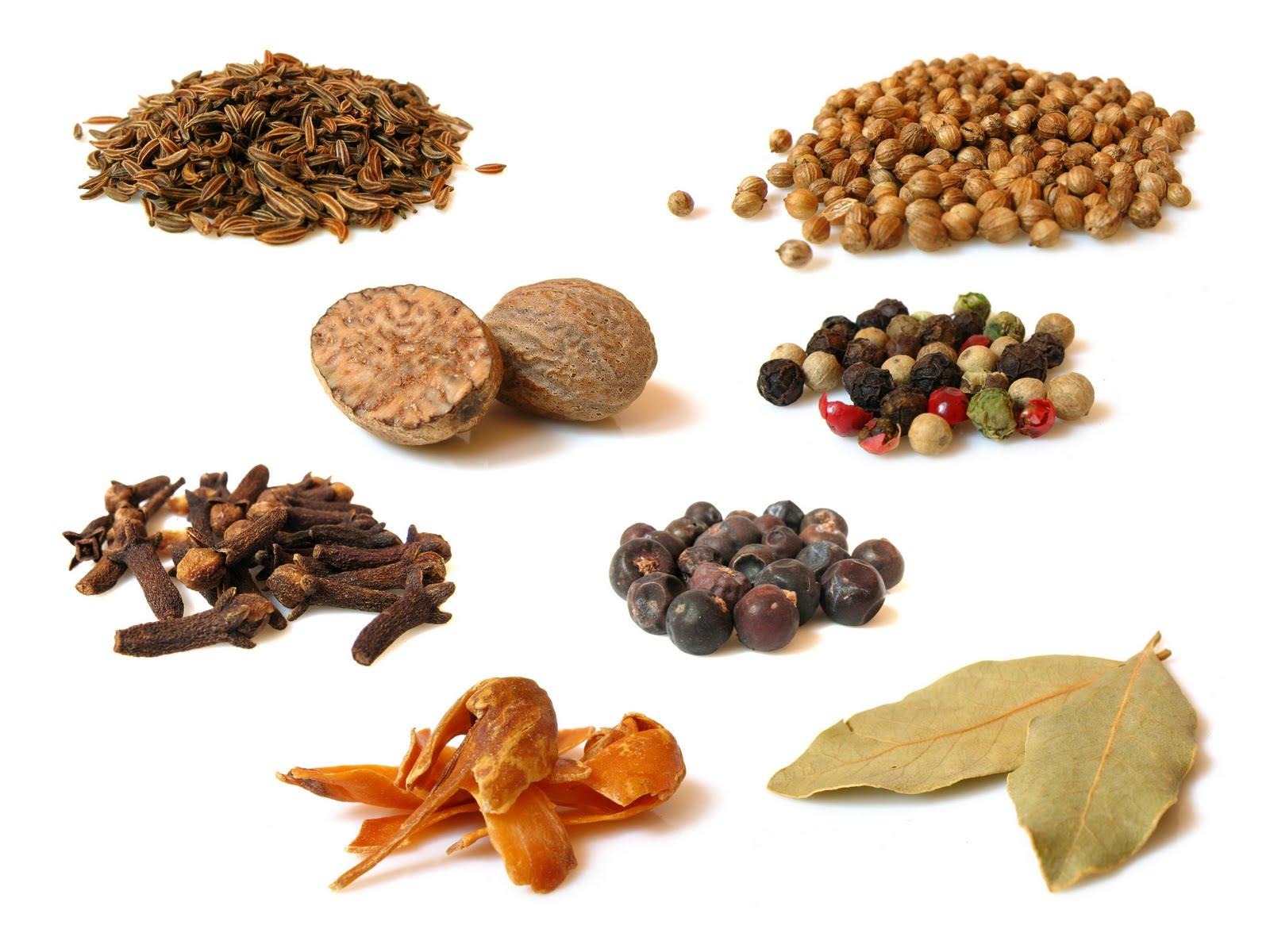 Especias para los Muslos de pollo tandoori